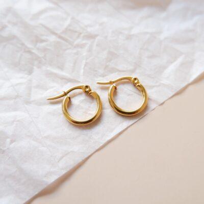 Sia Small Earrings – Image 3